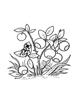 Blueberry-berries-coloring-pages-2