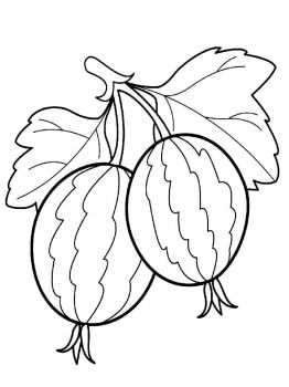 gooseberry-berries-coloring-pages-2