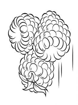 raspberries-berries-coloring-pages-12
