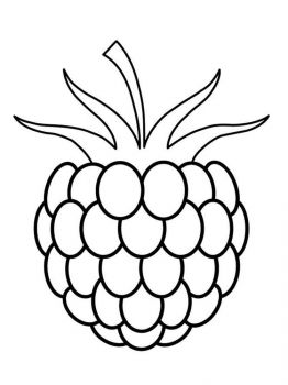 raspberries-berries-coloring-pages-3