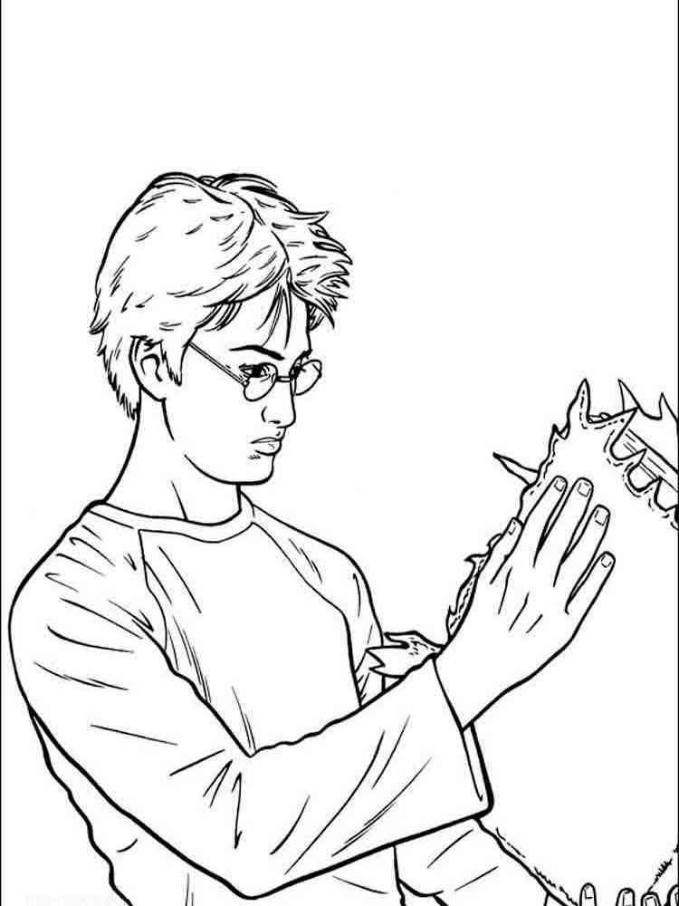 ausmalbilder harry potter  malvorlagen kostenlos zum