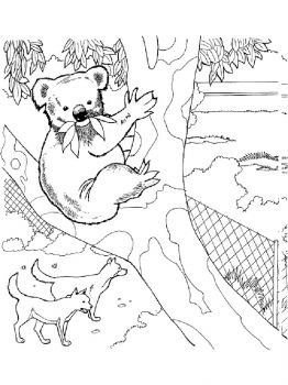 Australia-coloring-pages-16