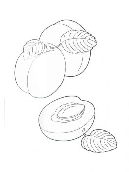 Apricot-fruits-coloring-pages-2