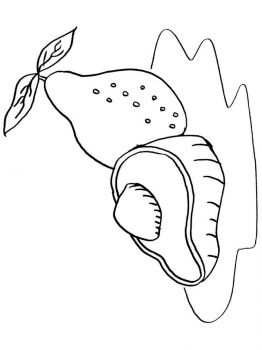 Avocado-fruits-coloring-pages-5