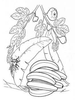 Banana-fruits-coloring-pages-1