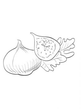 Figs-fruits-coloring-pages-3
