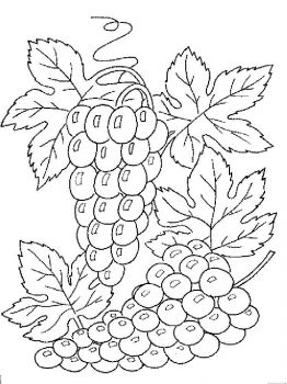 Grapes-fruits-coloring-pages-13