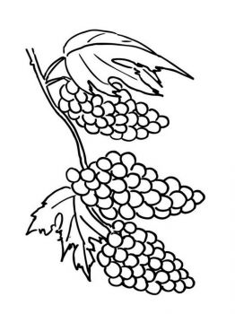 Grapes-fruits-coloring-pages-2