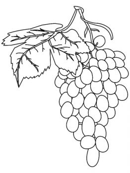 Grapes-fruits-coloring-pages-4
