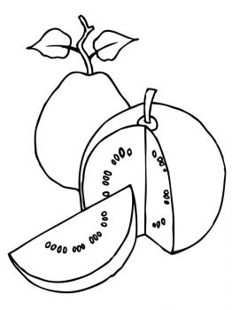 Guavas-fruits-coloring-pages-3