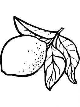 Lemon-fruits-coloring-pages-12