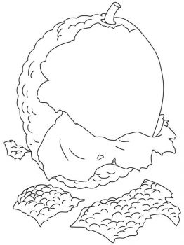 Lychee-fruits-coloring-pages-7