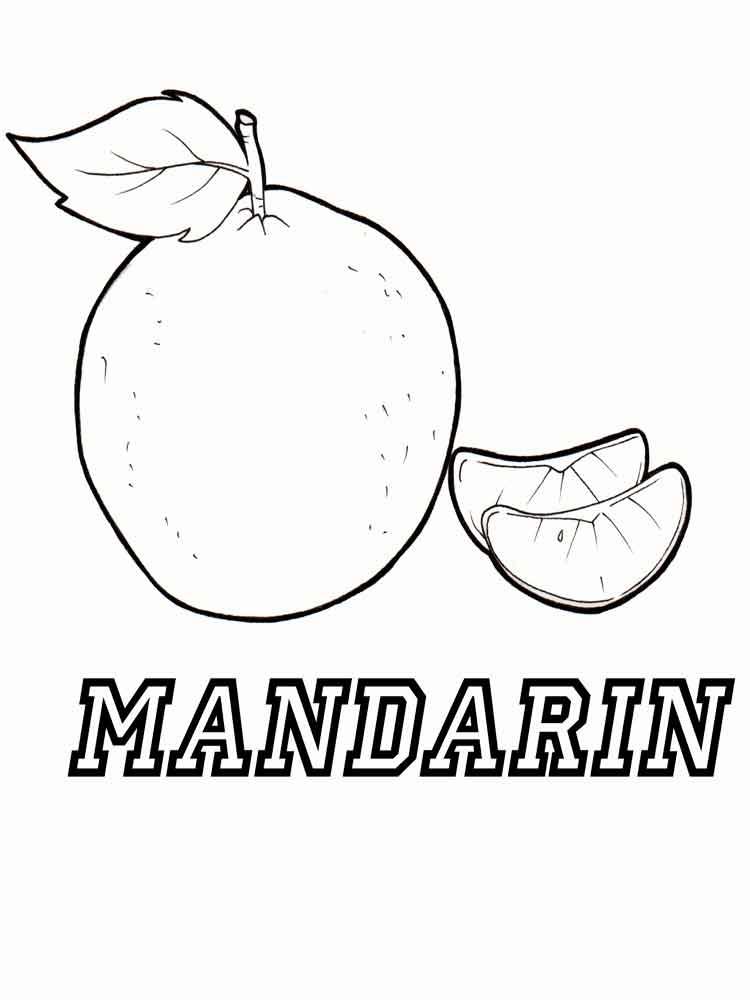 malvorlagen mandarin orange  ausmalbilder kostenlos zum