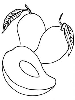 Mango-fruits-coloring-pages-1