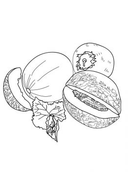 Melon-fruits-coloring-pages-4