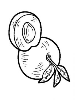 Nectarine-fruits-coloring-pages-5