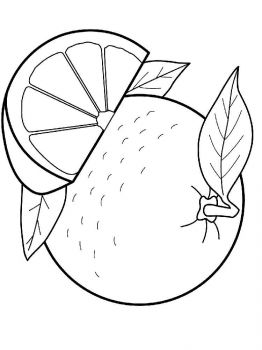 Orange-fruits-coloring-pages-6