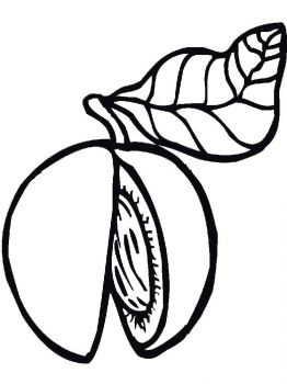 Peach-fruits-coloring-pages-12