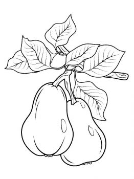 Pear-fruits-coloring-pages-6