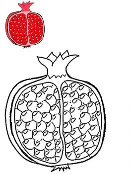Pomegranate-fruits-coloring-pages-3