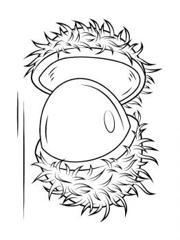 Rambutan-fruits-coloring-pages-3