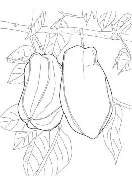 Star-fruits-coloring-pages-2
