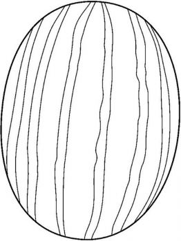 Watermelon-fruits-coloring-pages-9
