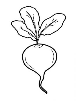 Vegetables-Beet-coloring-page-1