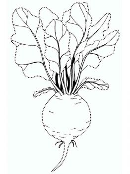 Vegetables-Beet-coloring-page-12