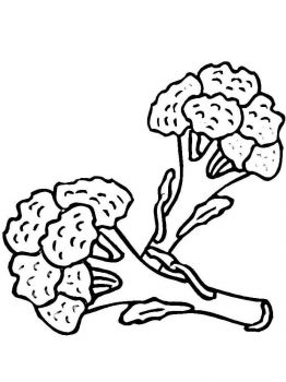 Vegetables-Broccoli-coloring-page-6