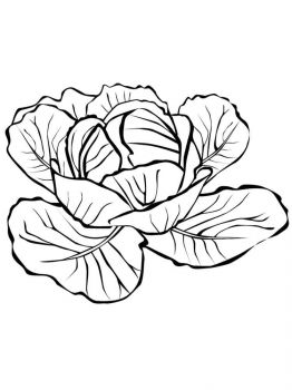Vegetables-Cabbage-coloring-page-13