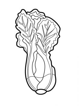 Vegetables-Lettuce-coloring-page-1