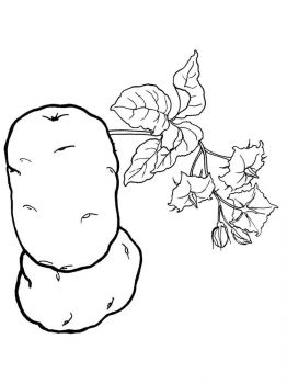 Vegetables-Potato-coloring-page-9