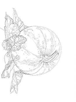 Vegetables-Pumpkin-coloring-page-13