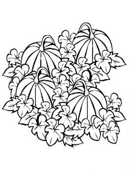 Vegetables-Pumpkin-coloring-page-14