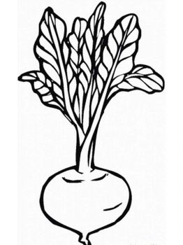 Vegetables-Turnip-coloring-page-6