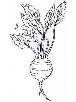 Vegetables-Turnip-coloring-page-8