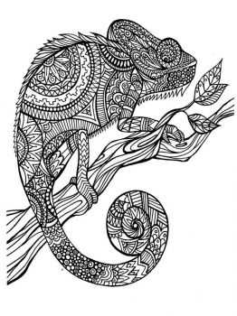 adult-coloring-pages-animals-16
