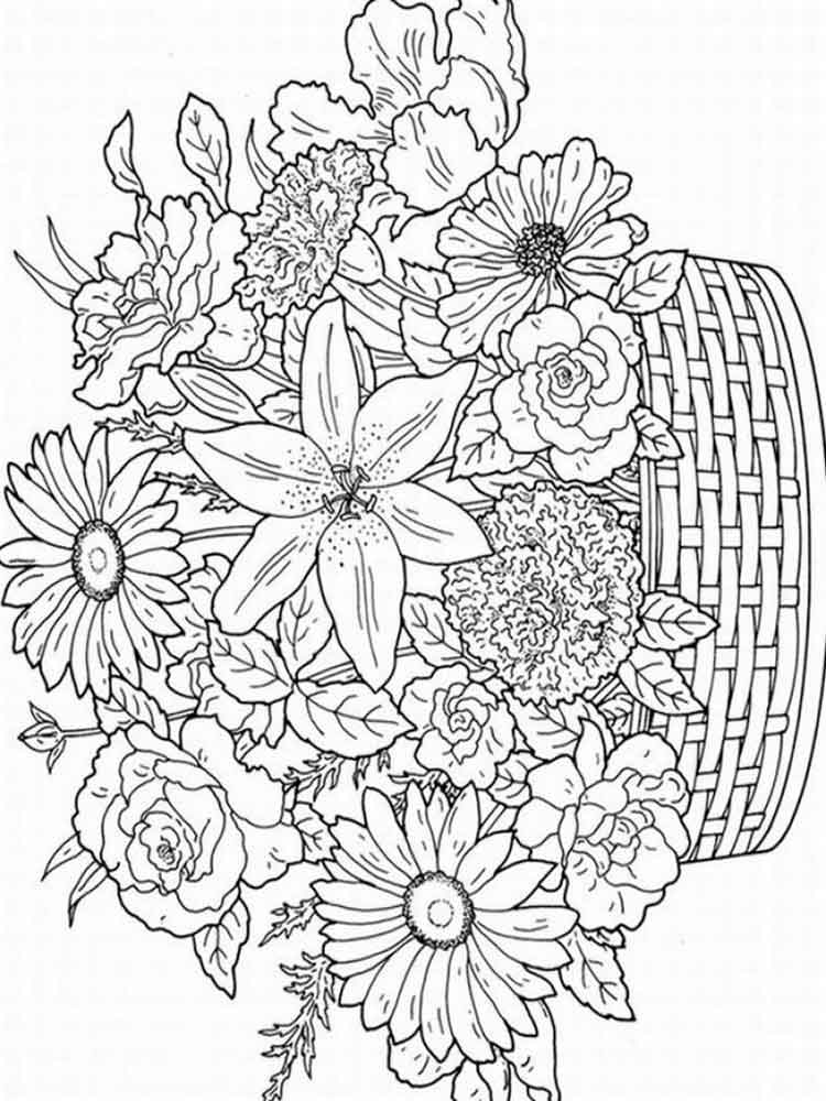 Free Adult coloring pages. Printable or download Flowers ...
