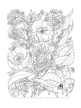 adult-coloring-pages-flowers-2