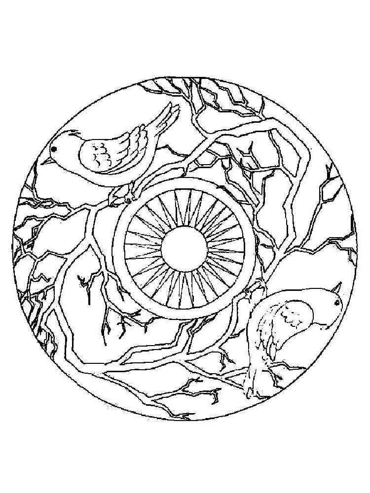 ausmalbilder tier mandala herunter und drucken