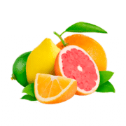 Citrus Fruits coloring pages