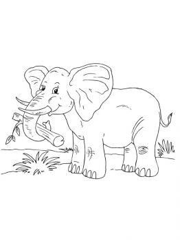 African-Animals-coloring-pages-16