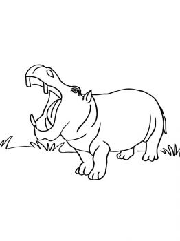 African-Animals-coloring-pages-19