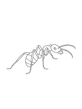 Ant-coloring-pages-14