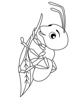 Ant-coloring-pages-39