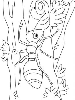 Ant-coloring-pages-40