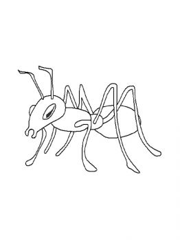 Ant-coloring-pages-5