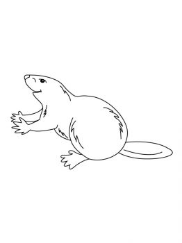 Beaver-coloring-pages-11
