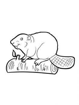 Beaver-coloring-pages-4